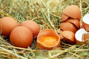 eggs food that promote hair growth
